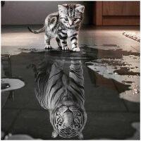 Kitten met tijger spiegelbeeld