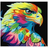 Kleurrijke eagle / arend