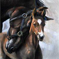 Paard met veulen Diamond Painting