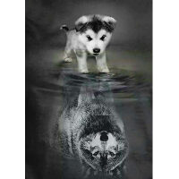 Puppy met wolf spiegelbeeld
