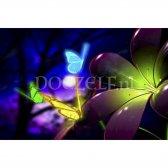 glazen-bloem-vlinder-001