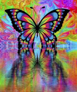 Kleurrijke vlinder - Diamond Painting