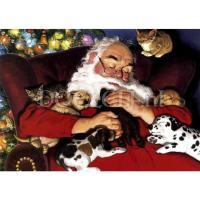 Slapende kerstman met hondjes