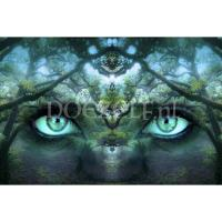Mystery forest eyes Diamond Painting
