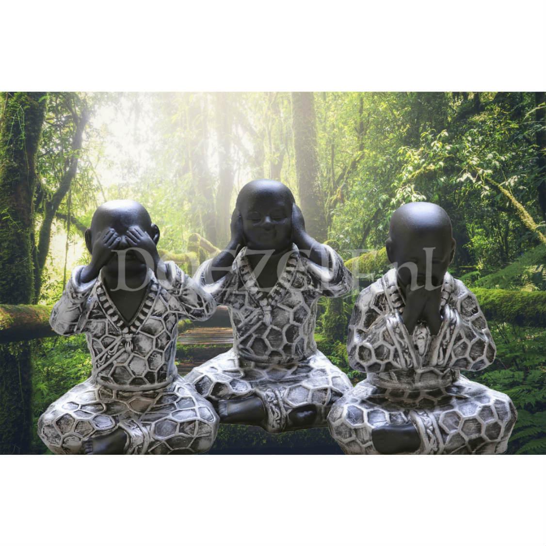 Horen, Zien en Zwijgen Boeddha