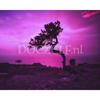 Roze lucht met boom Diamond Painting