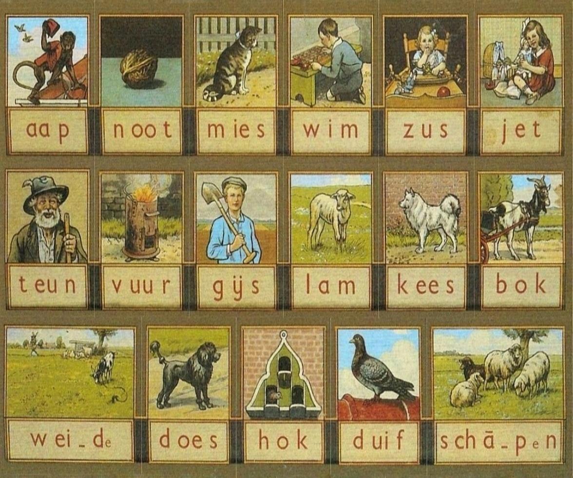 Aap Noot Mies leesplankje Diamond Painting - Doezelf.nl