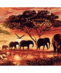 Olifanten - Schilder op nummer