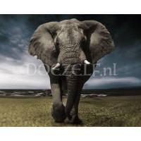 Imposante olifant Diamond Painting