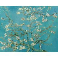 Amandelbloesem van Van Gogh Diamond Painting