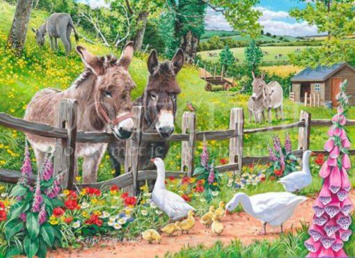 Ezeltjes en ganzen op de boerderij