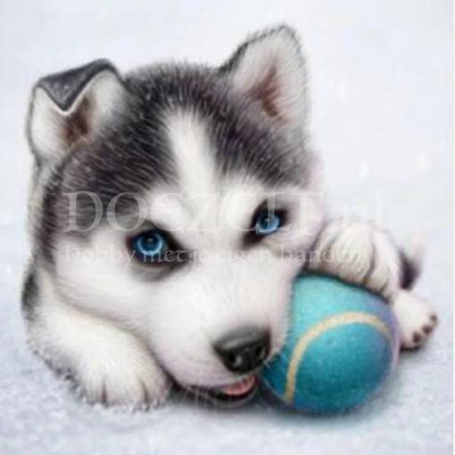 Husky puppy Diamond Painting