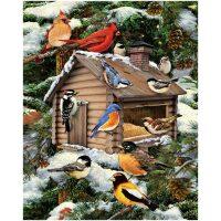 Winter met vogels Diamond Painting