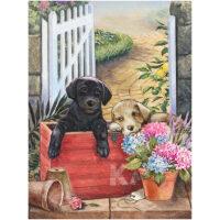 Puppies in een kratje met bloemen Diamond Painting