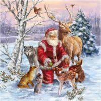 Aardige kerstman en vele dieren Diamond Painting